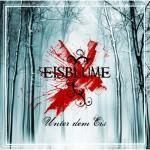 Eisblume - Unter dem Eis (Album)