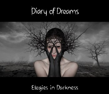 Elegies in Darkness by Diary of Dreams von facebook com/officialdiaryofdreams