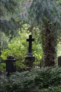 FriedhofHGW1_Friedi von Murr